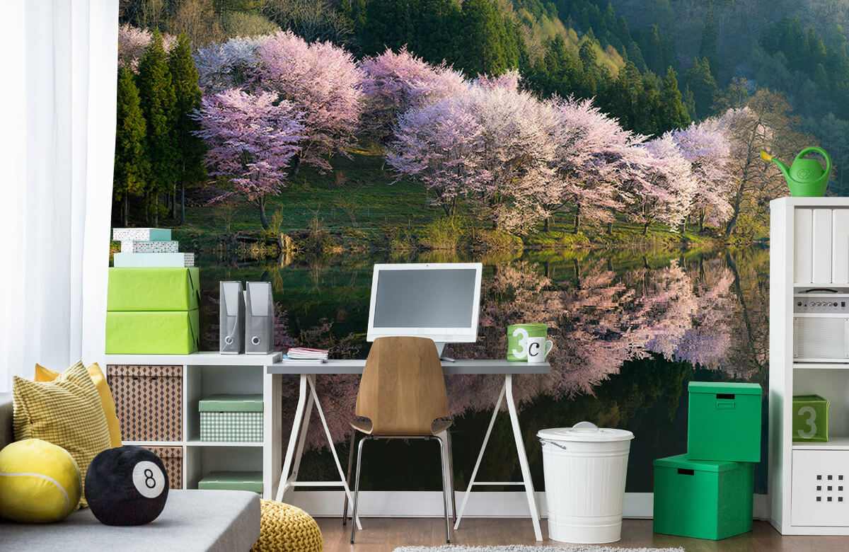 Landscape Sakura 8
