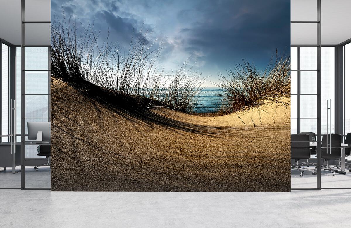 Landschap Dunes 5