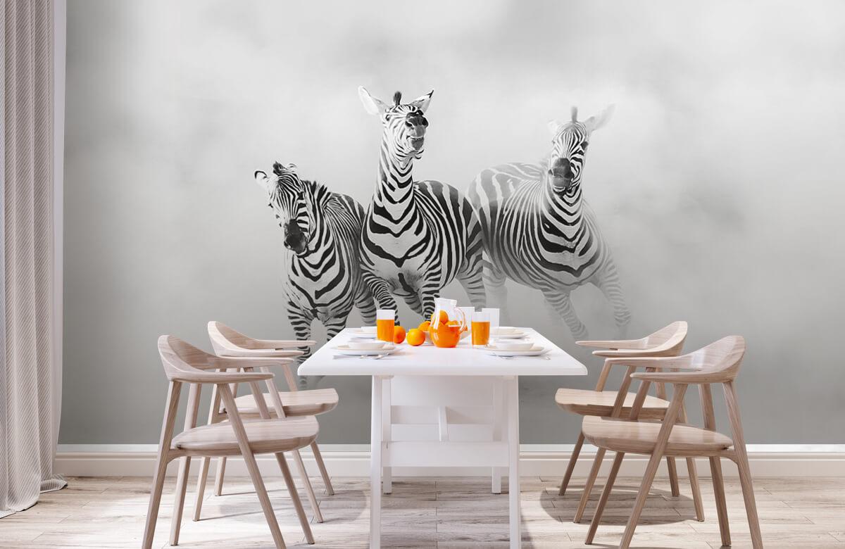 Wilde dieren Zebras 3