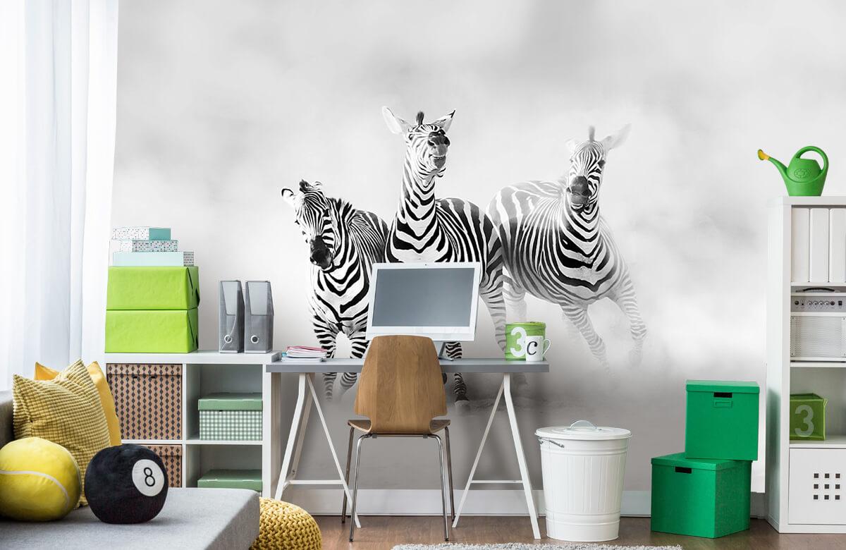 Wilde dieren Zebras 11