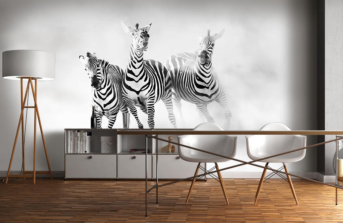 Wilde dieren Zebras 1