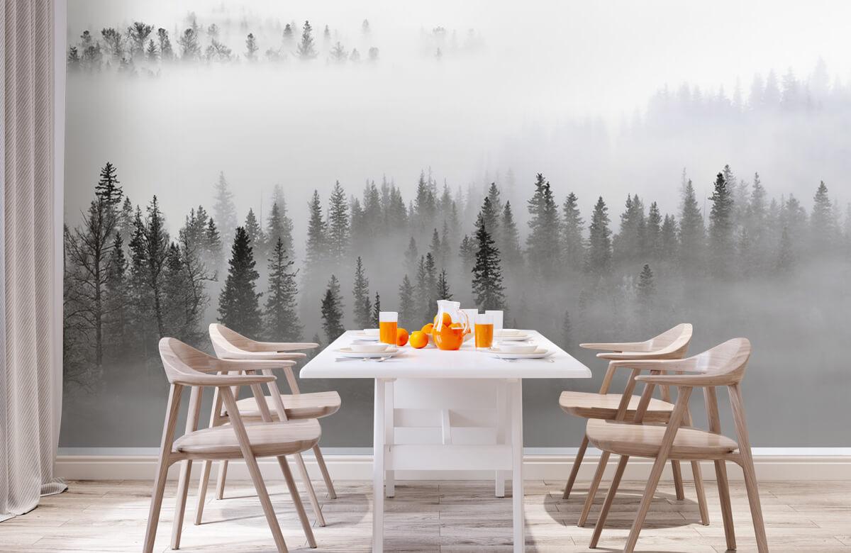Landschap Foggy Forest 3