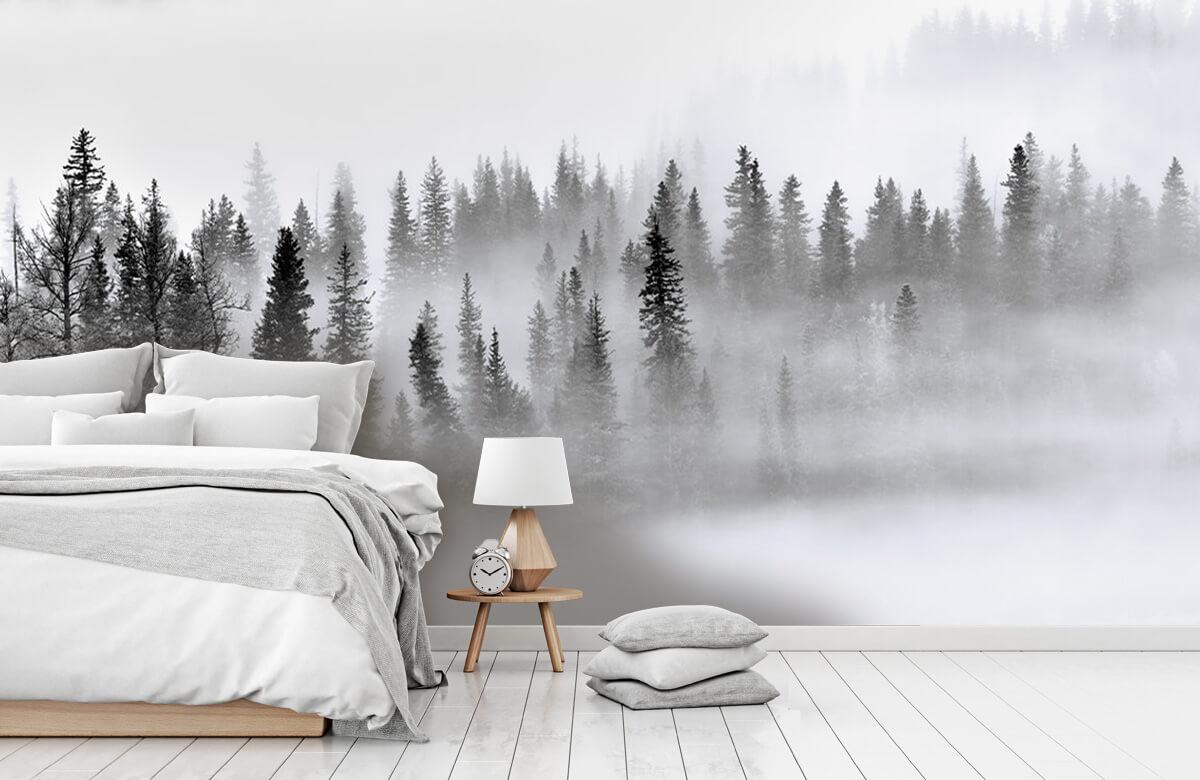 Landschap Foggy Forest 8