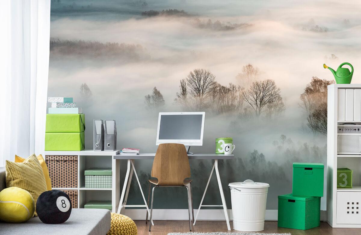 Landschap Winter fog 11
