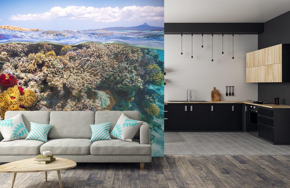 Underwater Mayotte : The Reef 9