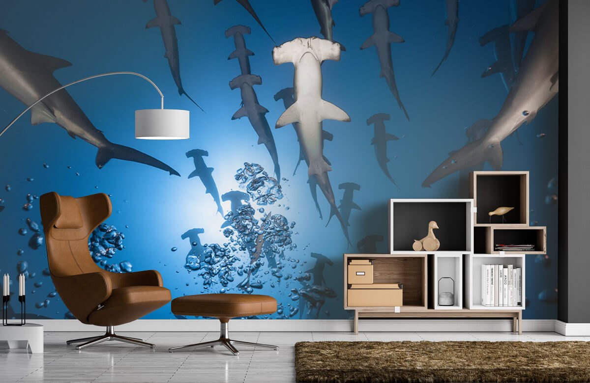 Underwater Hammerhead Shark 8