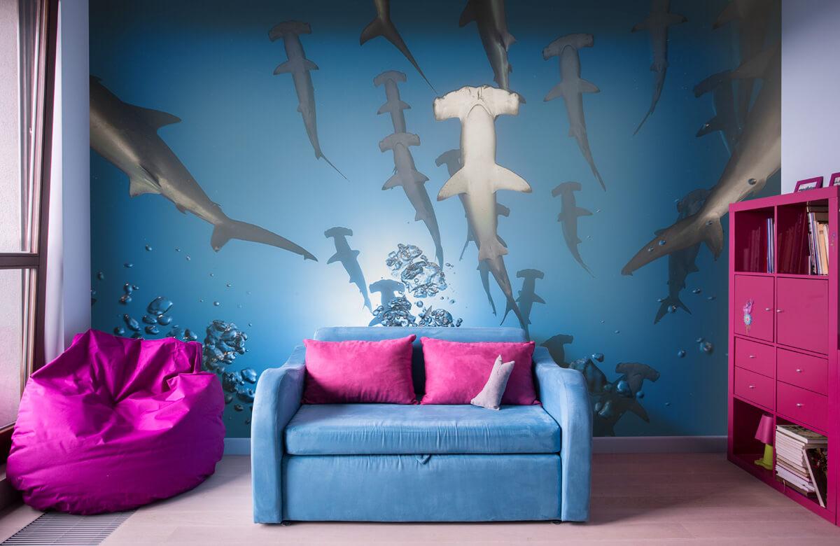 Underwater Hammerhead Shark 11