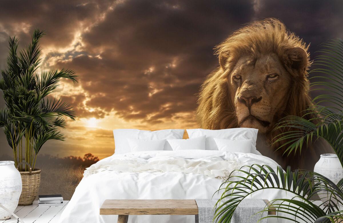 Animals Adventures on Savannah - The Lion King 2