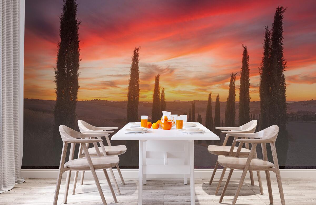 Landscape Tuscany sunset 3
