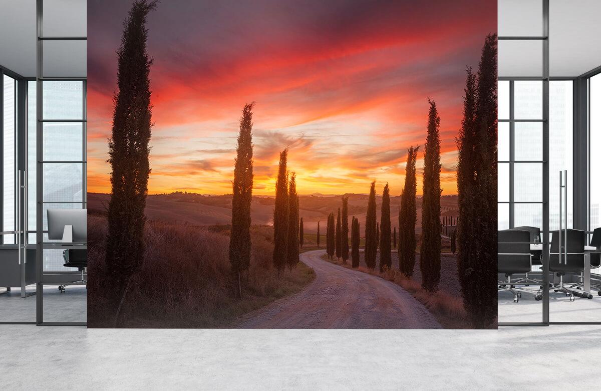 Landscape Tuscany sunset 7