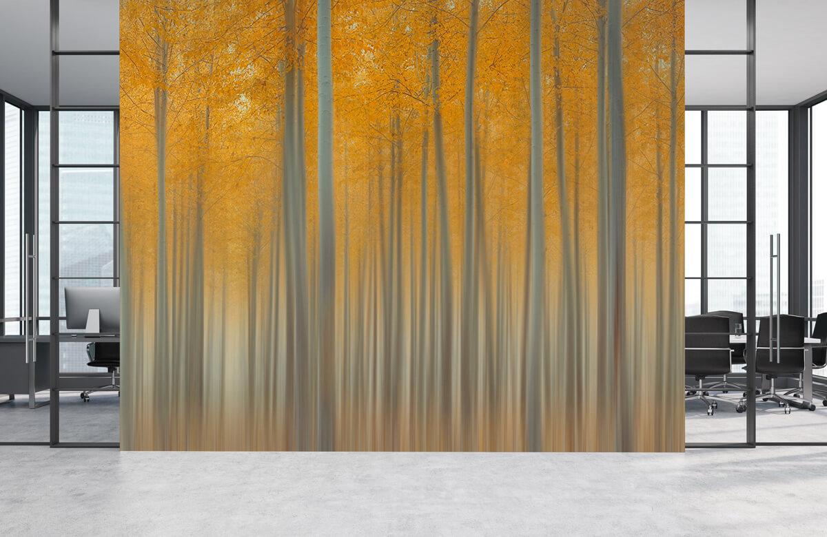 Creative-edit Autumn Light 6