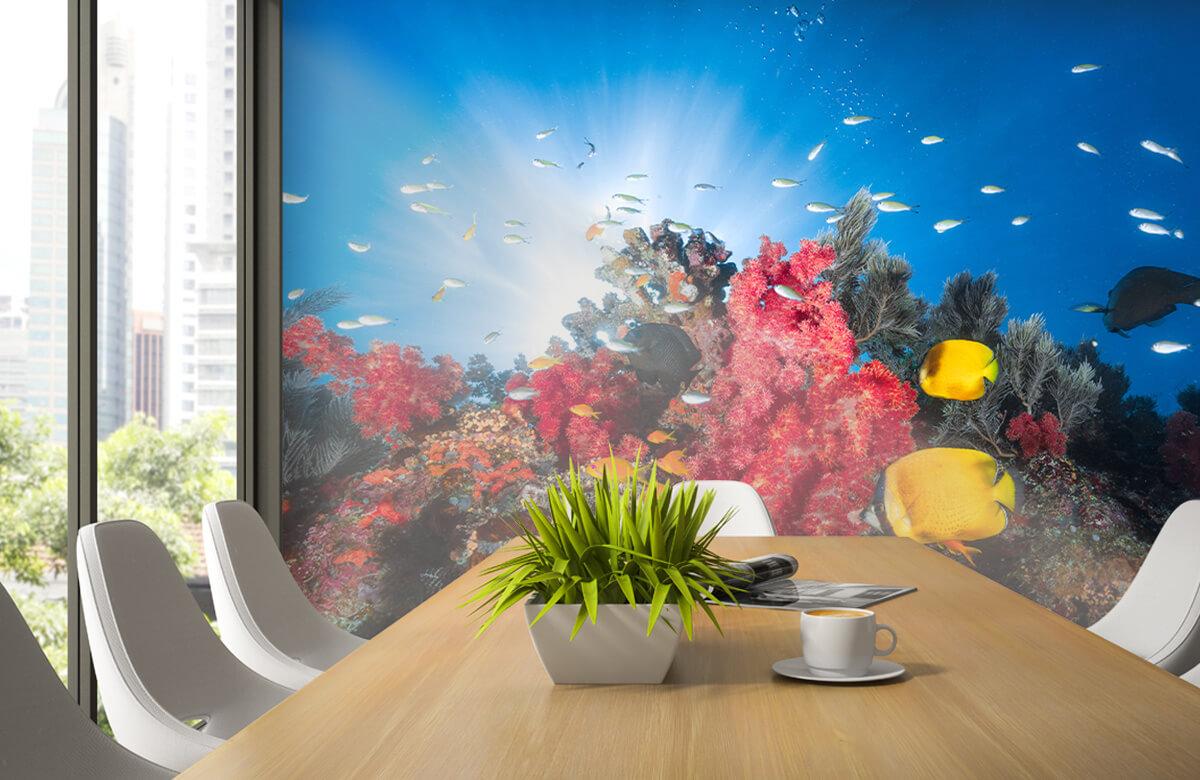 Underwater Reef life 7