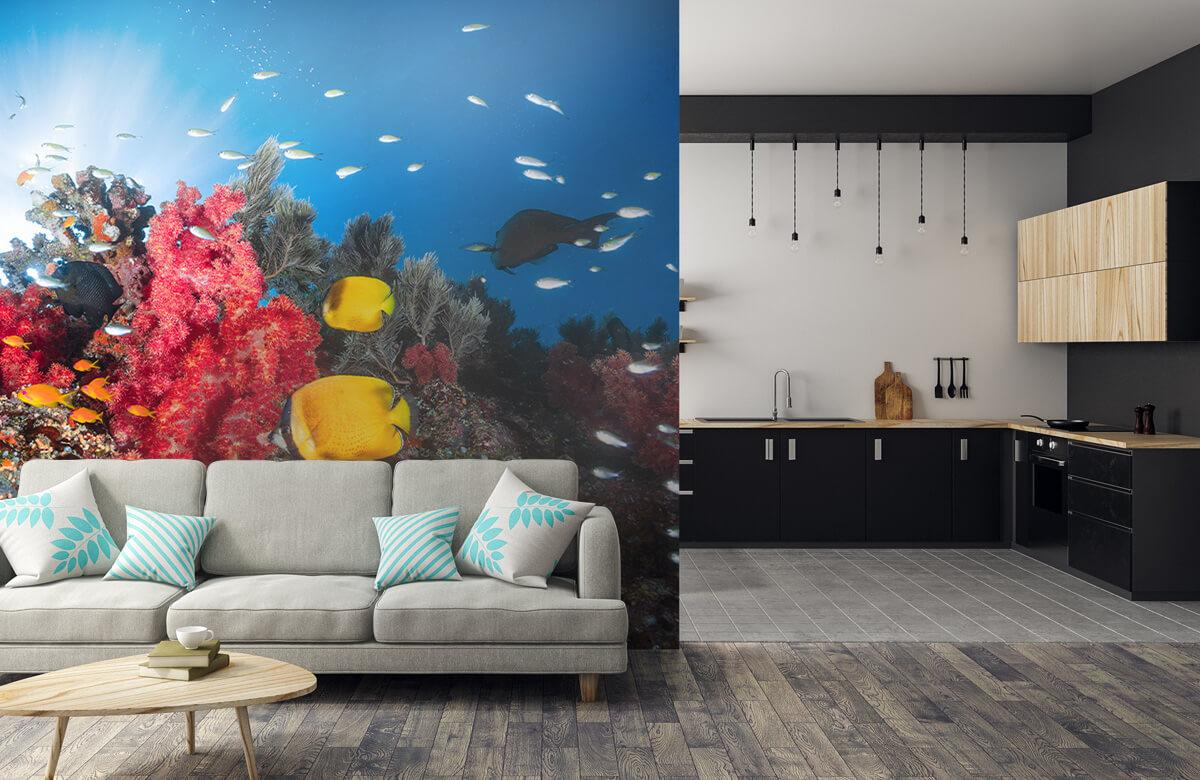 Underwater Reef life 9