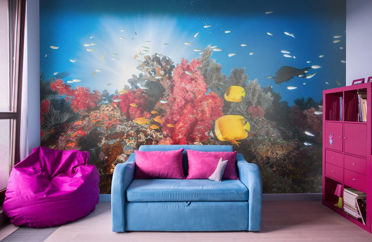 Underwater Reef life 1