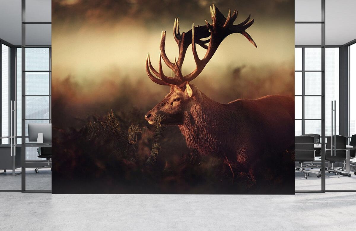 Wildlife K I N G 4