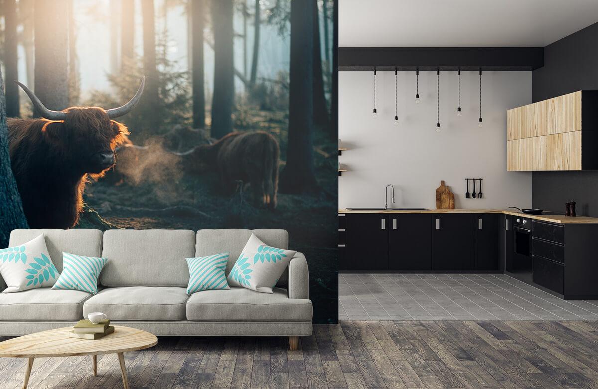 Wallpaper i morgonljus 8