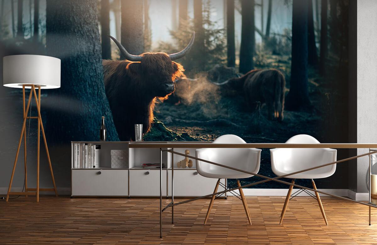 Wallpaper i morgonljus 1