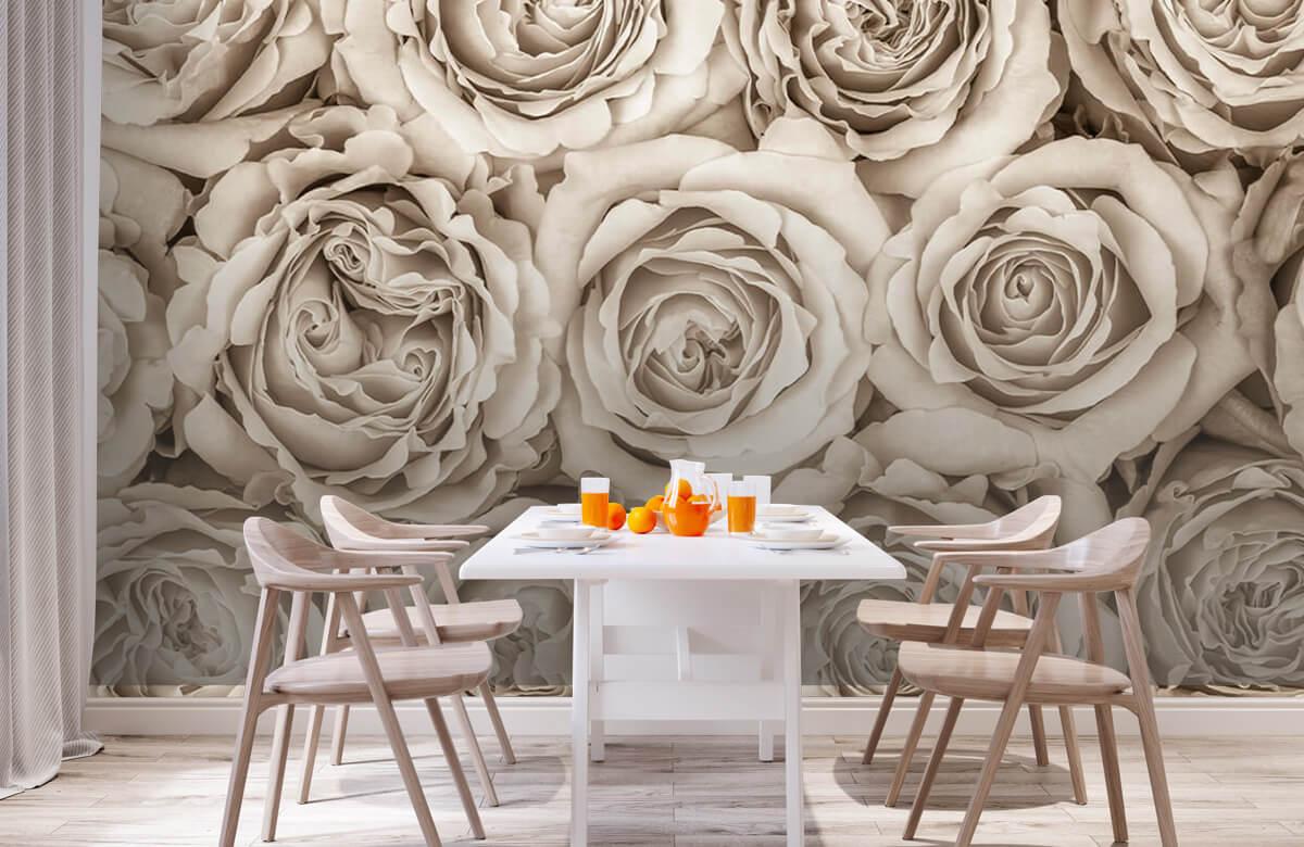 Bakgrund för rosor 3