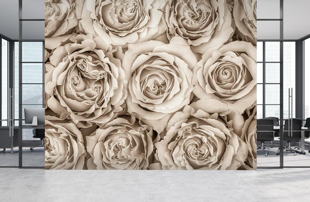 Bakgrund för rosor 6