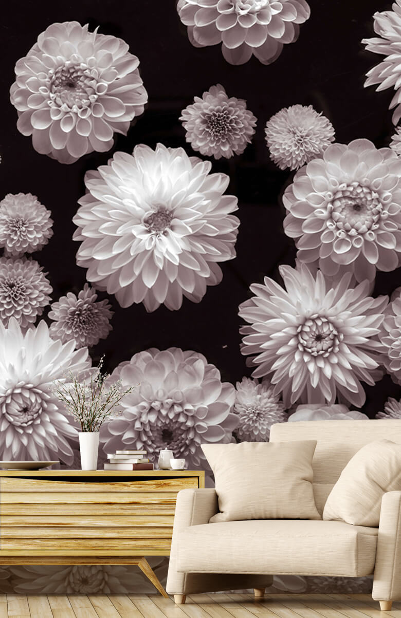 Dahlia Blommor 3