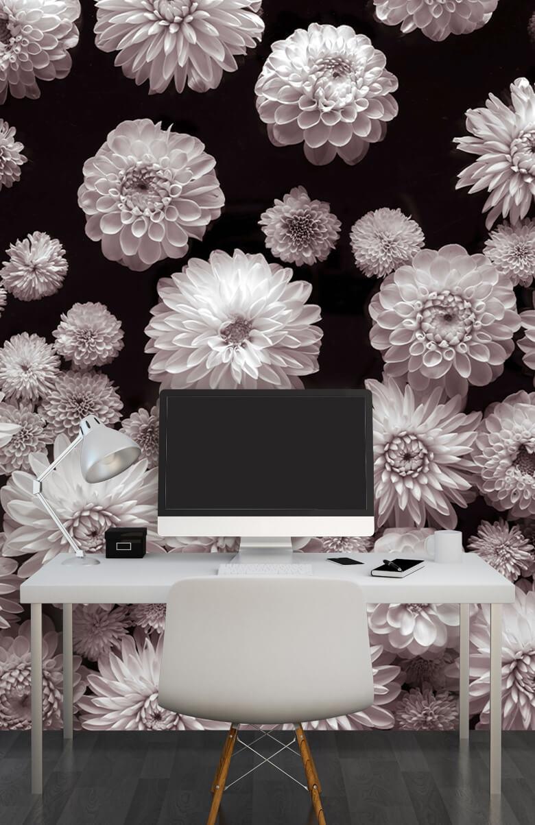 Dahlia Blommor 8
