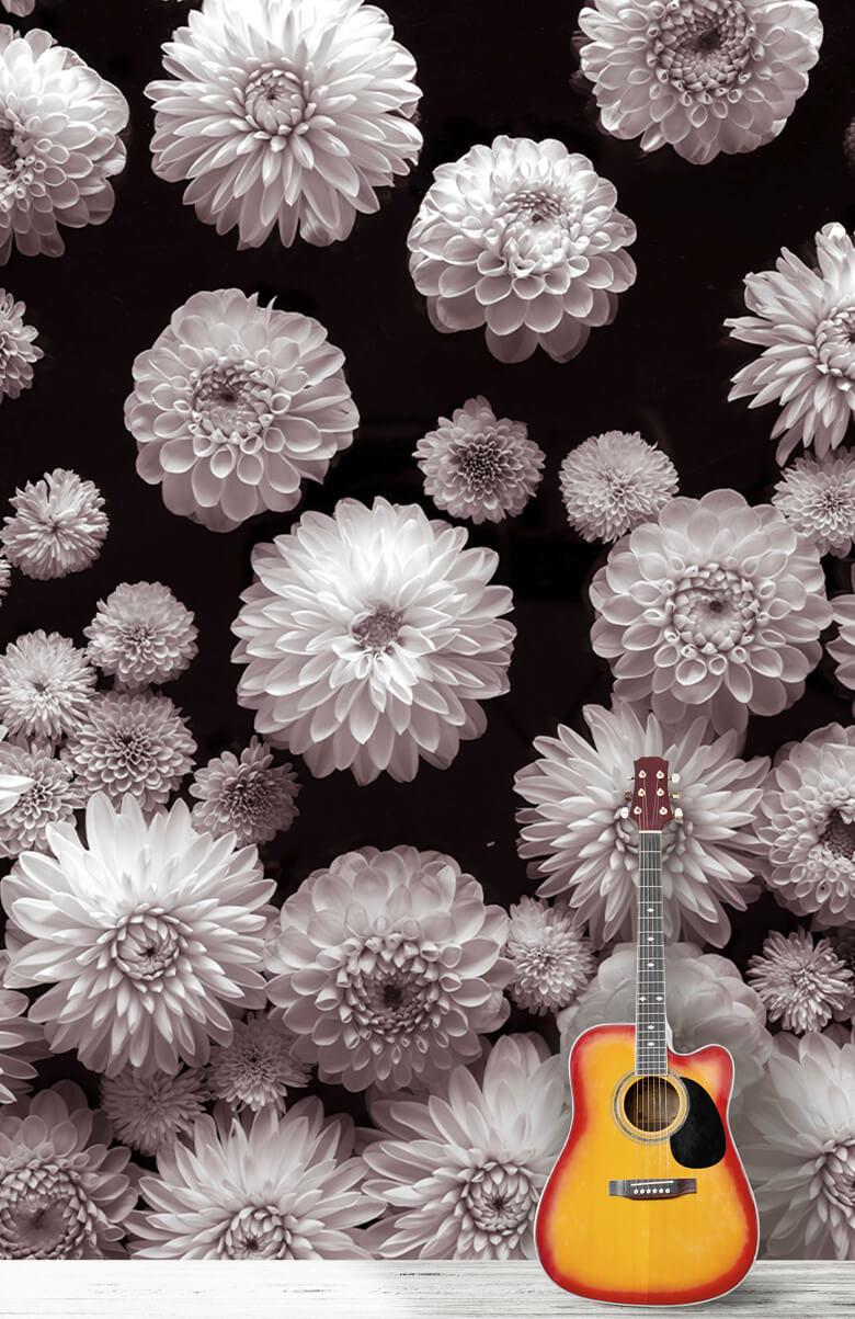 Dahlia Blommor 9