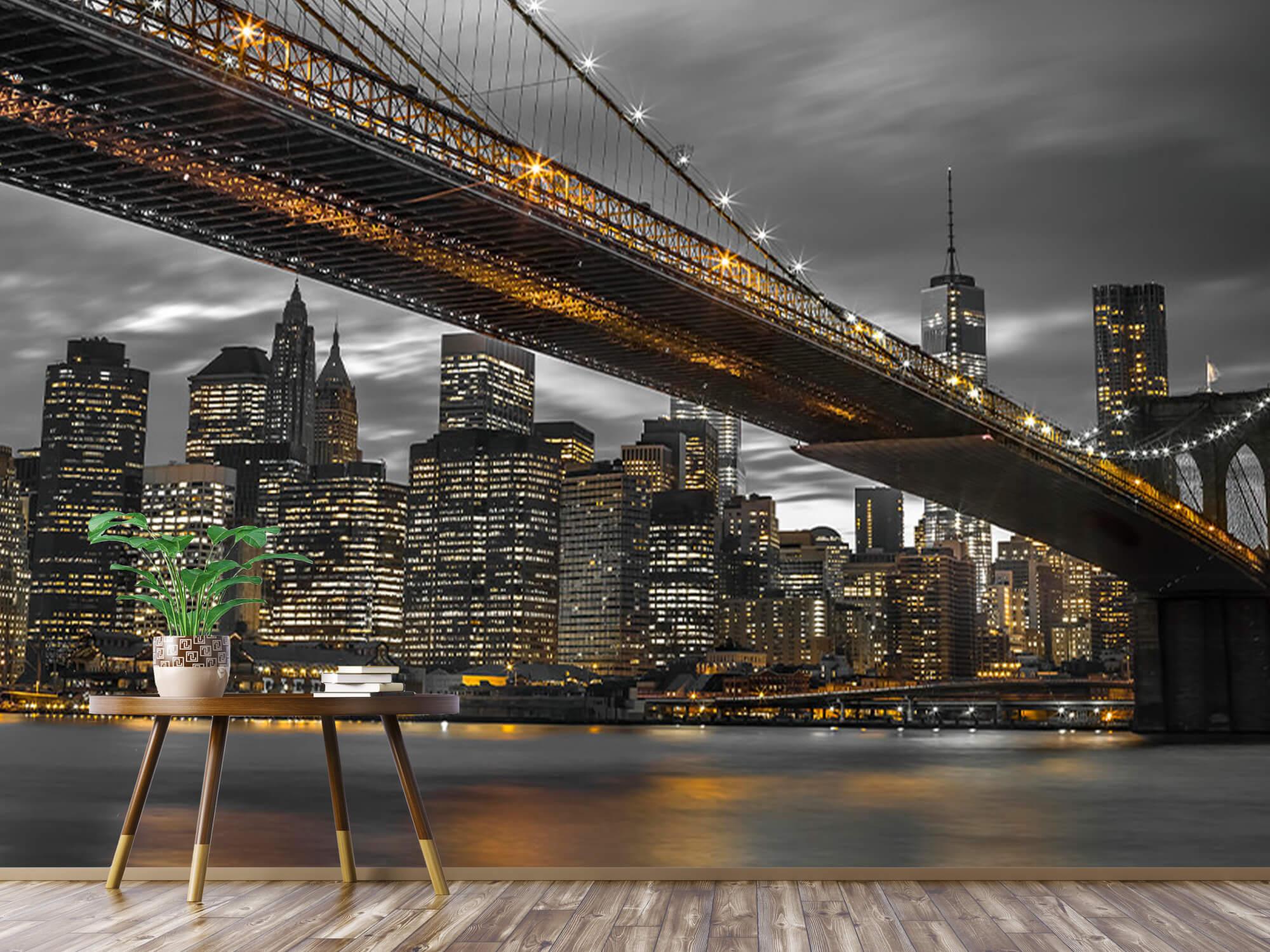 Brooklyn Bridge, New York 6