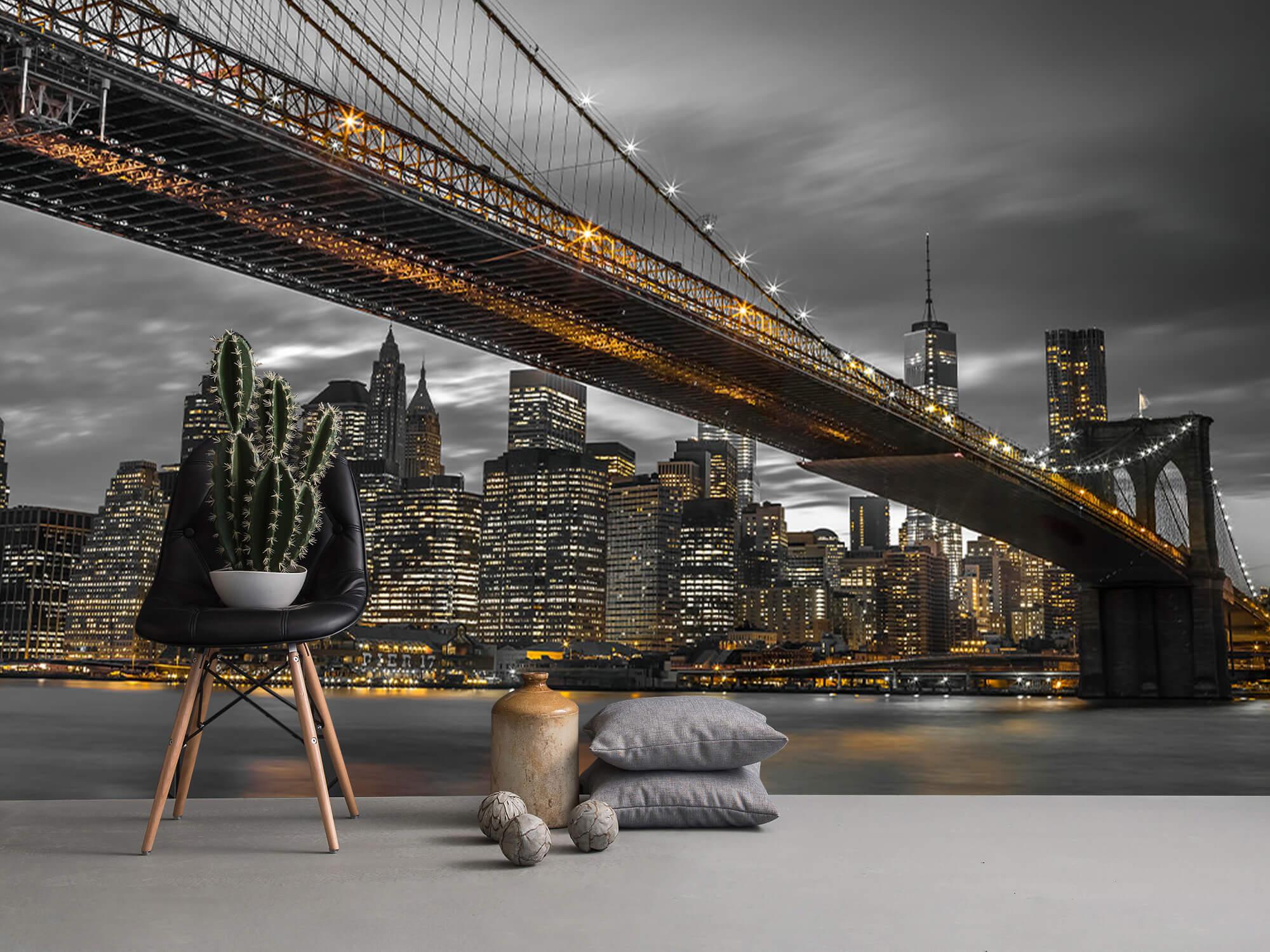 Brooklyn Bridge, New York 9