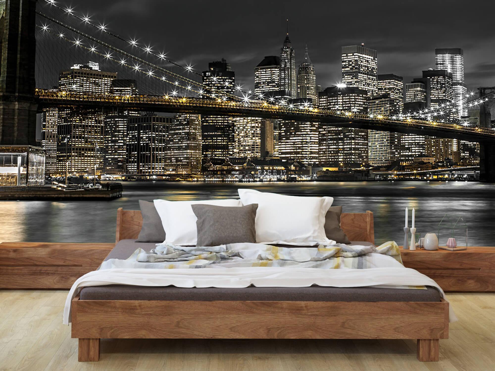 Brooklyn Bridge på natten 7