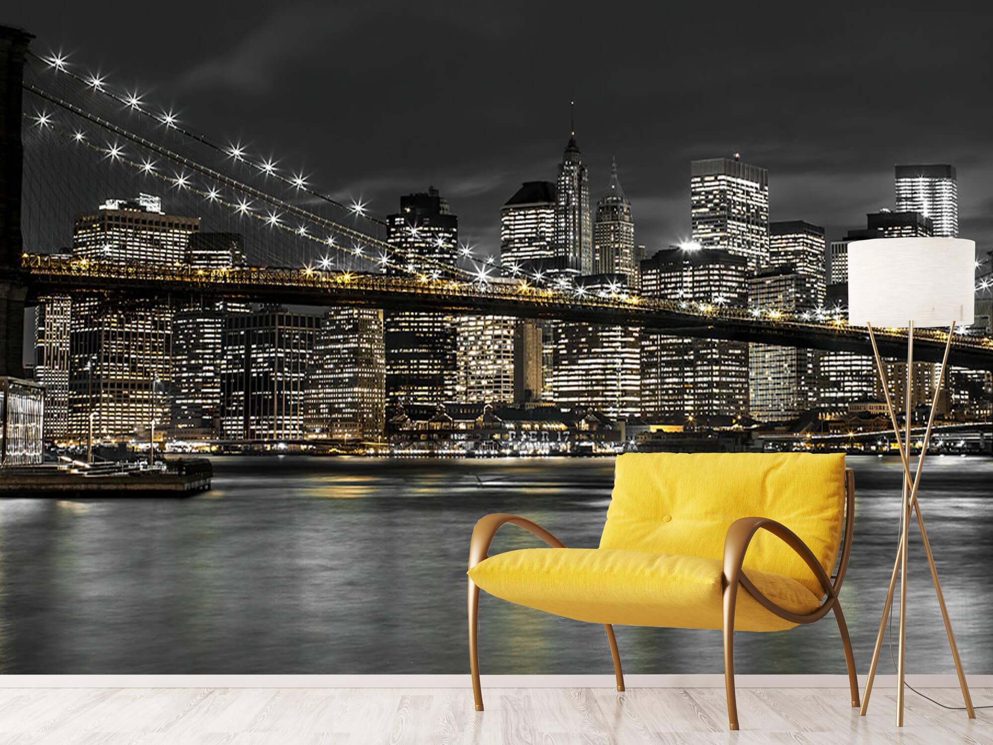 Brooklyn Bridge på natten 13