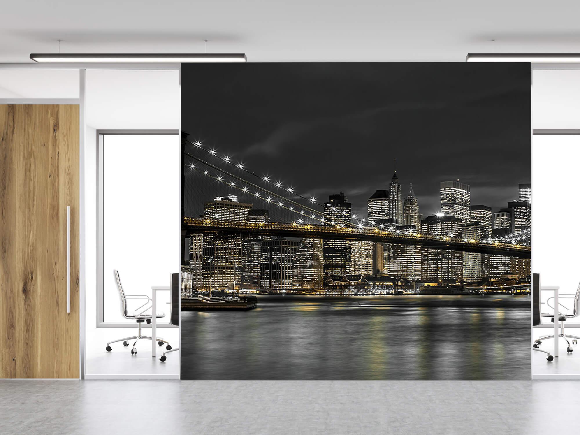 Brooklyn Bridge på natten 14