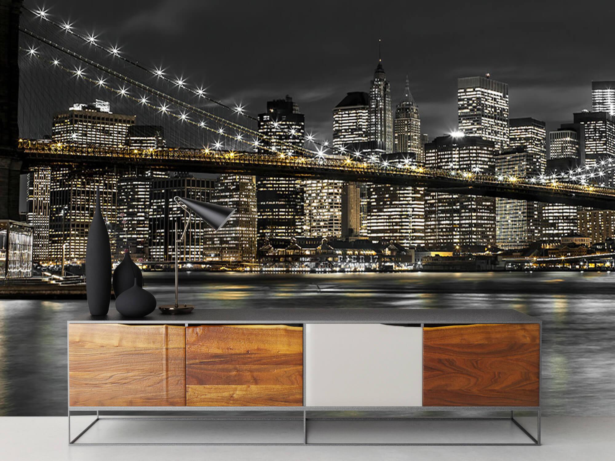 Brooklyn Bridge på natten 17