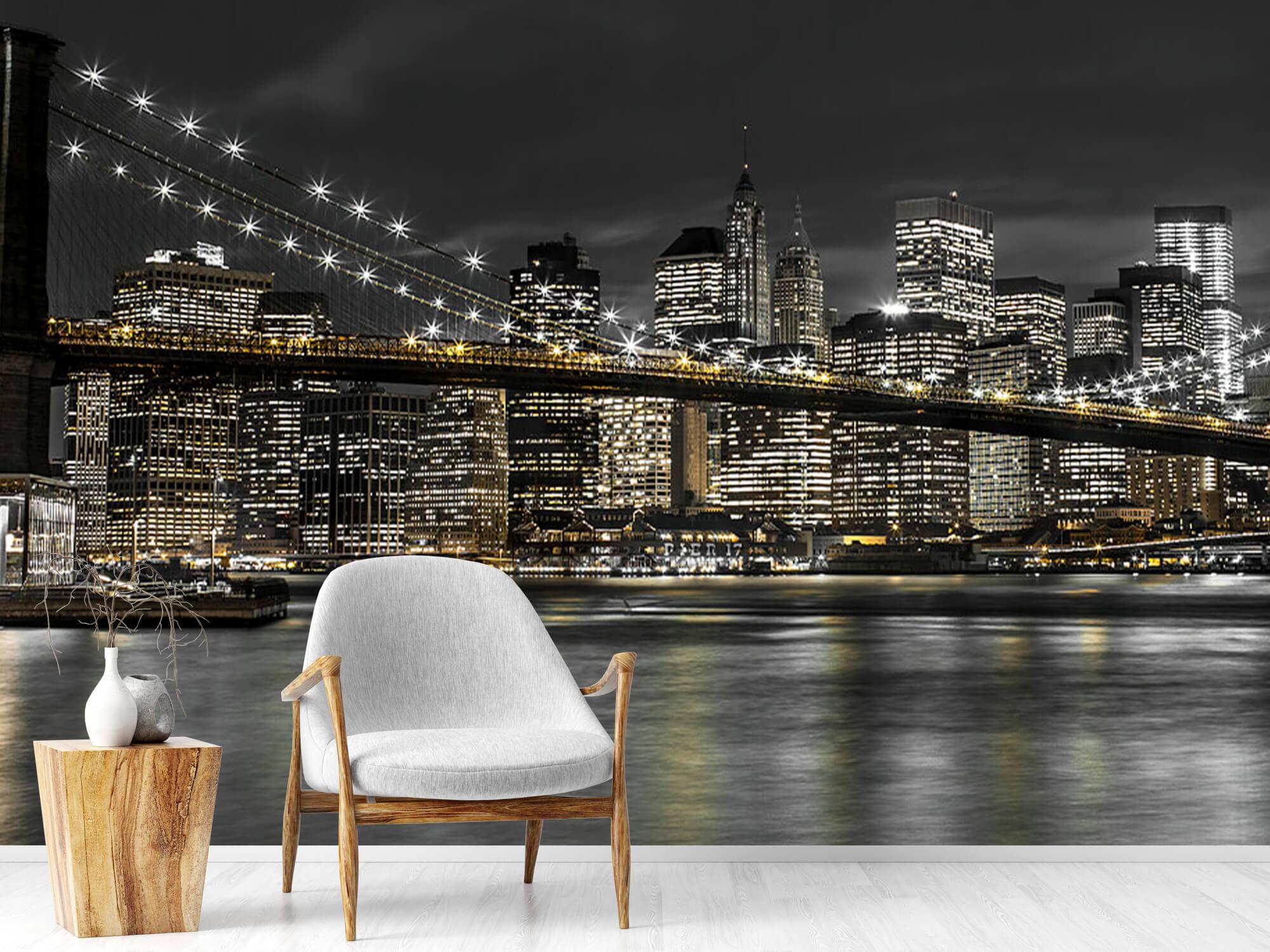 Brooklyn Bridge på natten 19