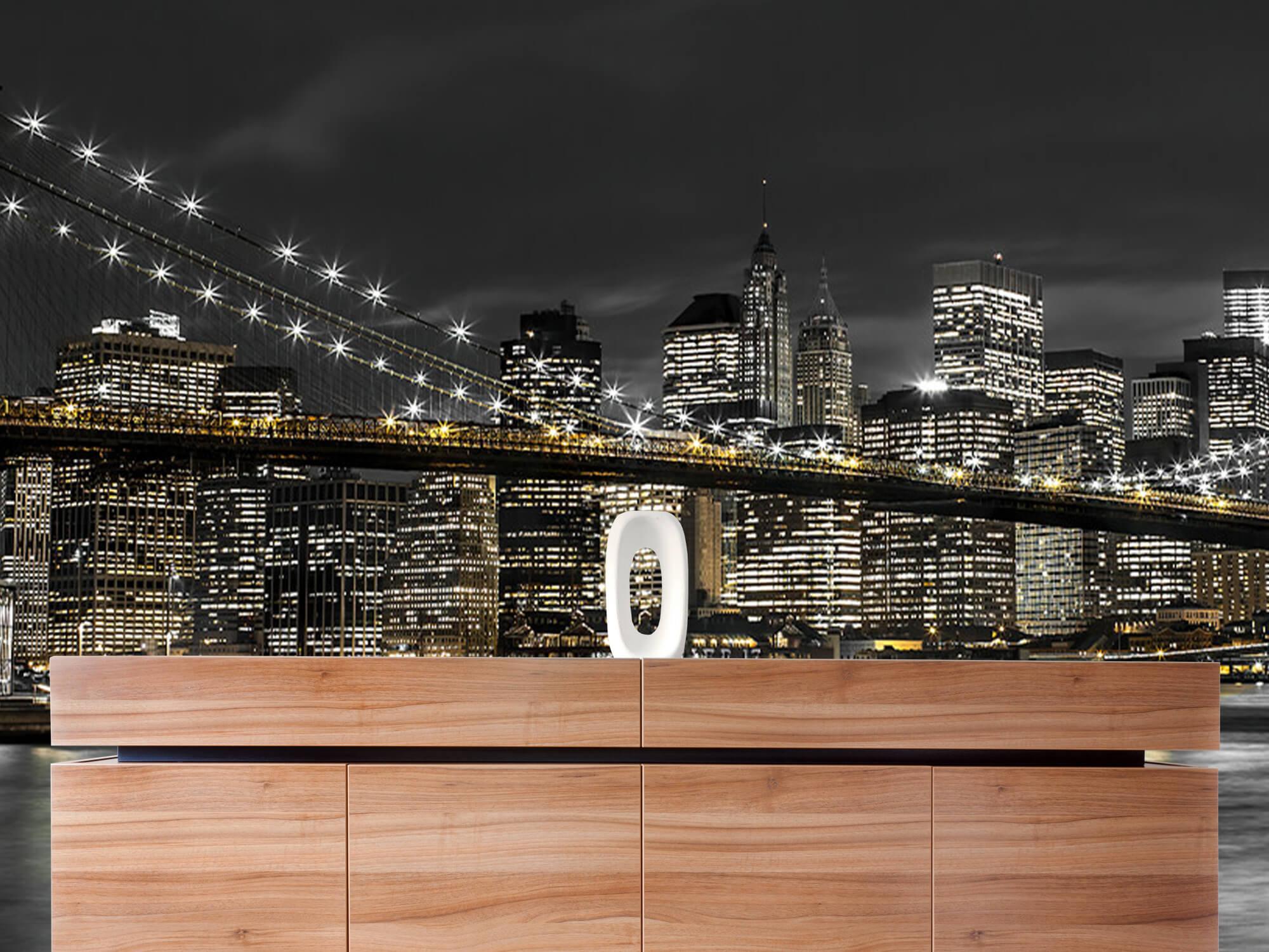 Brooklyn Bridge på natten 22