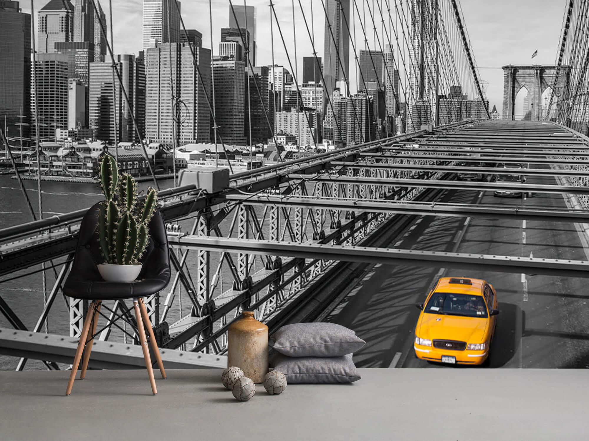 En taxi över Brooklyn Bridge 10
