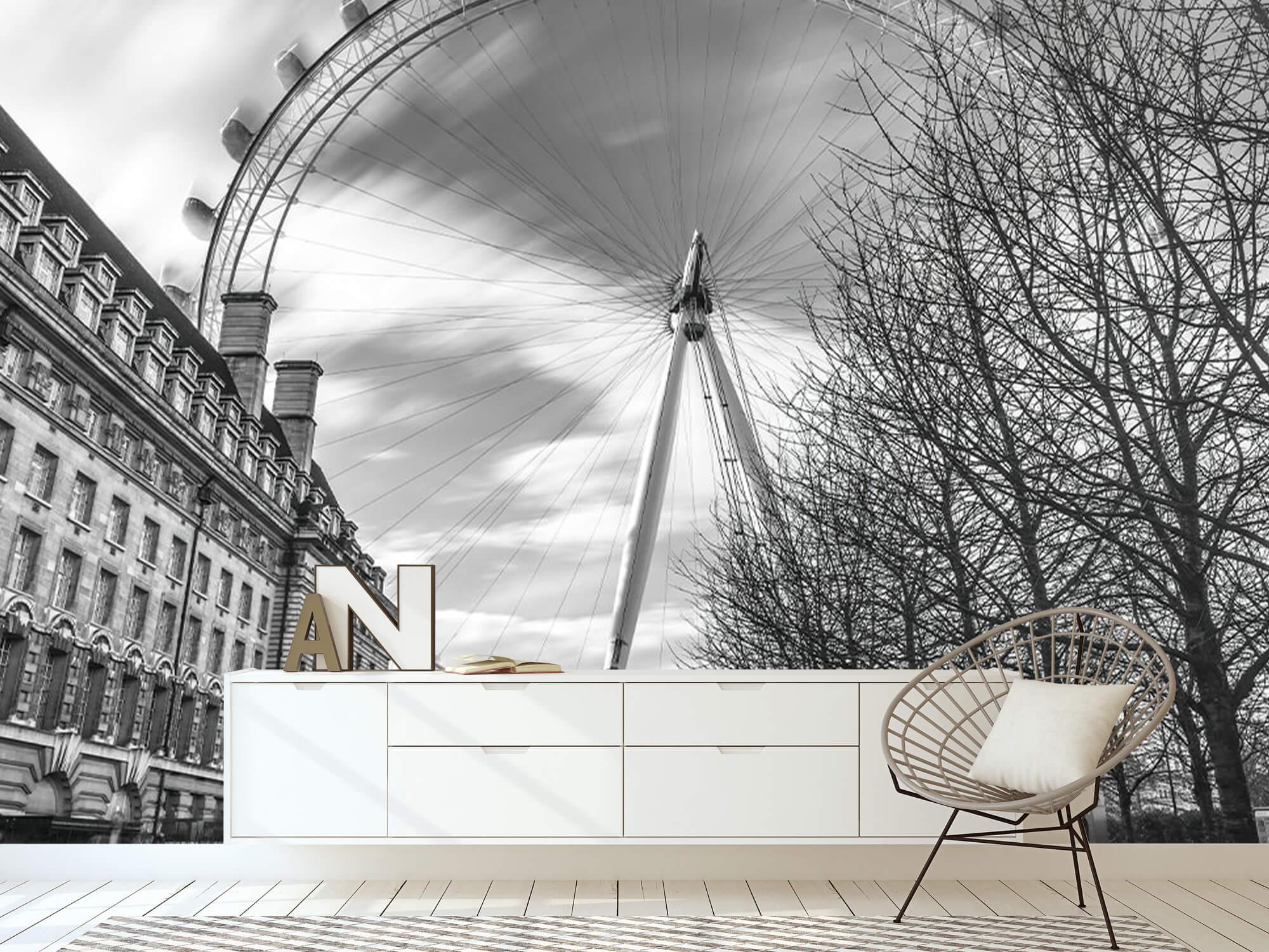 Pariserhjul i London 19