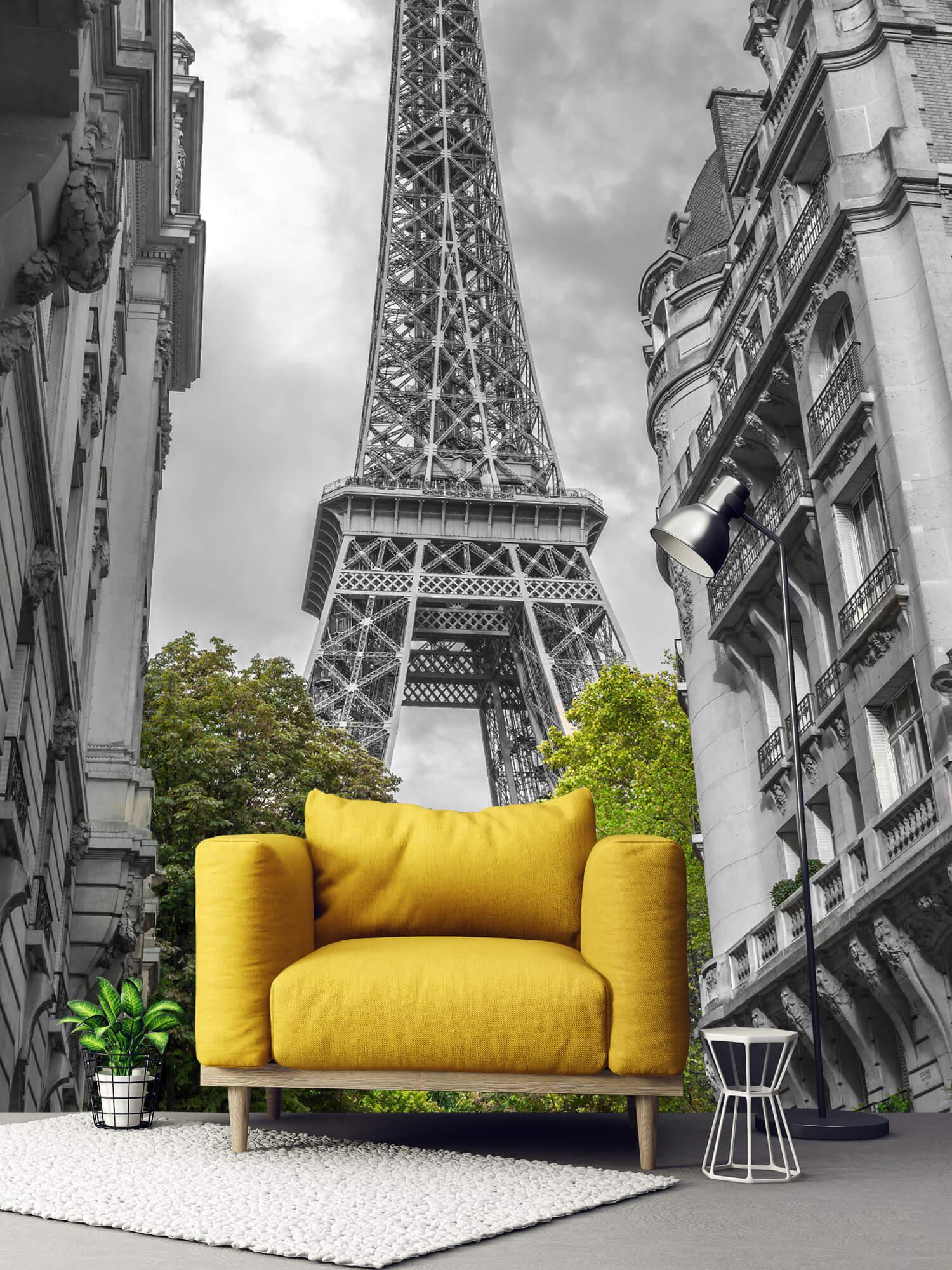 Eiffeltornet svart och vitt 3