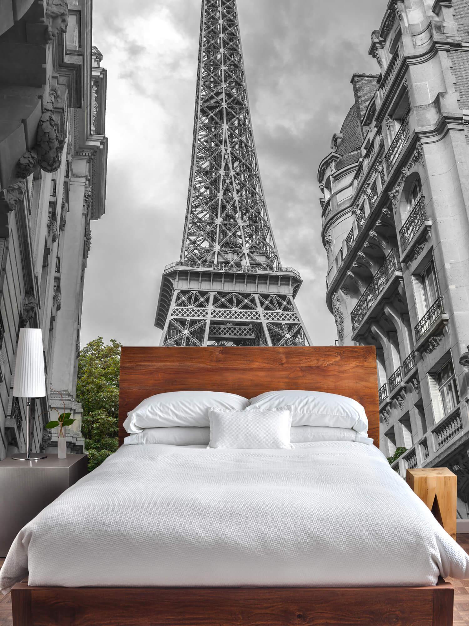 Eiffeltornet svart och vitt 5