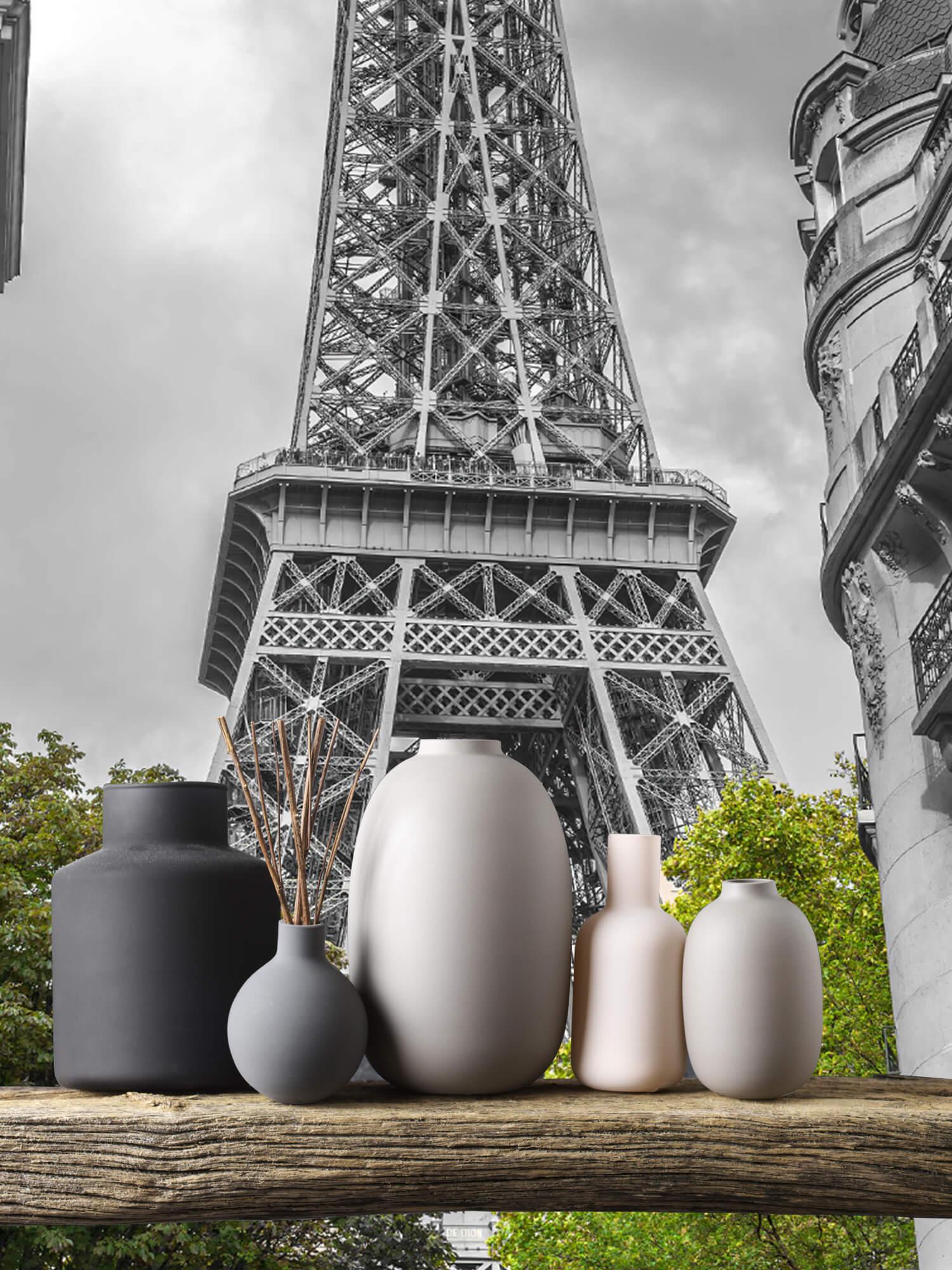 Eiffeltornet svart och vitt 6