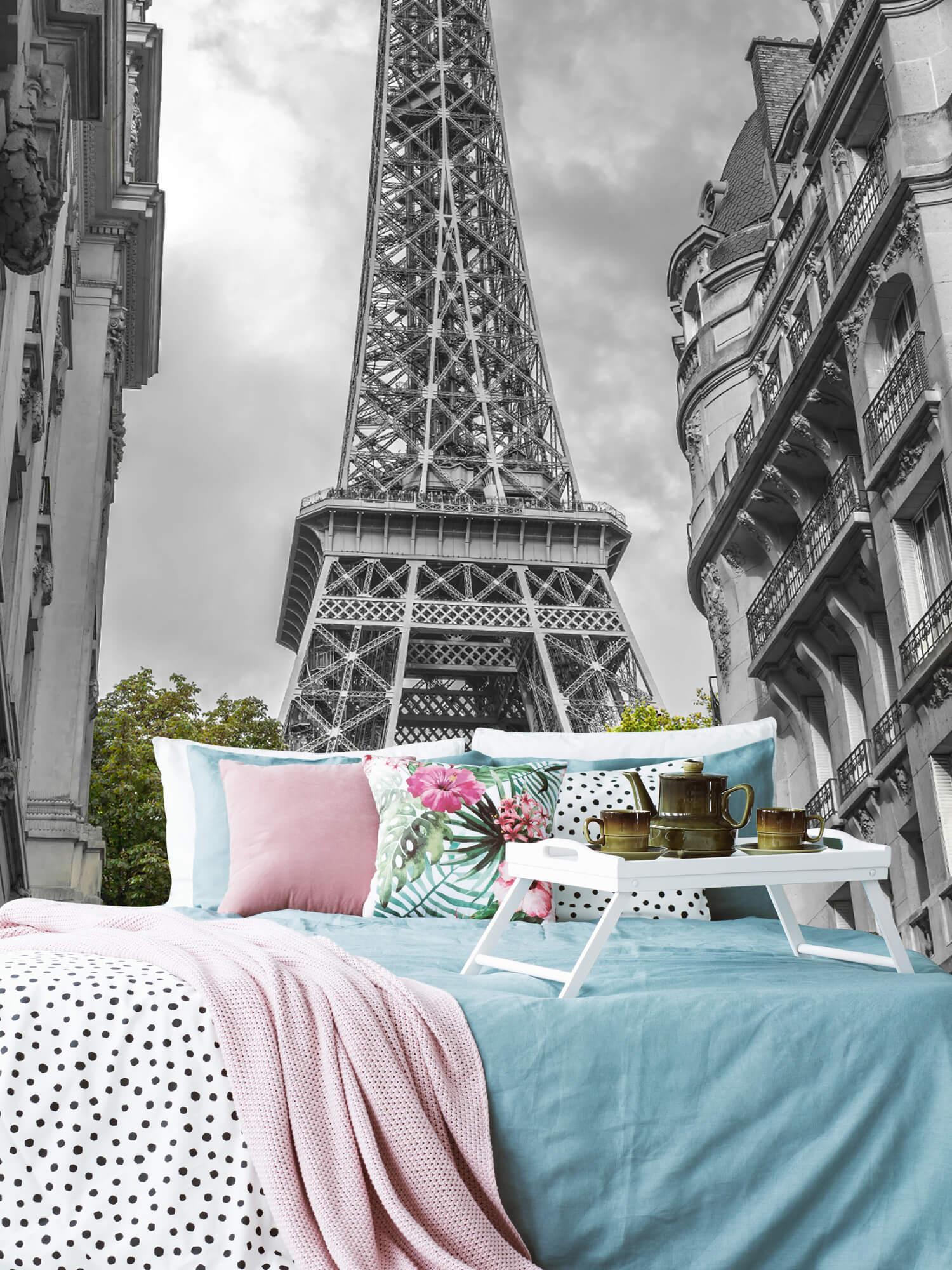 Eiffeltornet svart och vitt 7