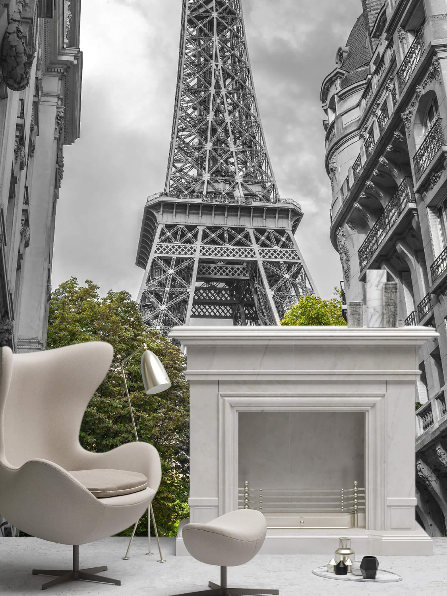 Eiffeltornet svart och vitt 8