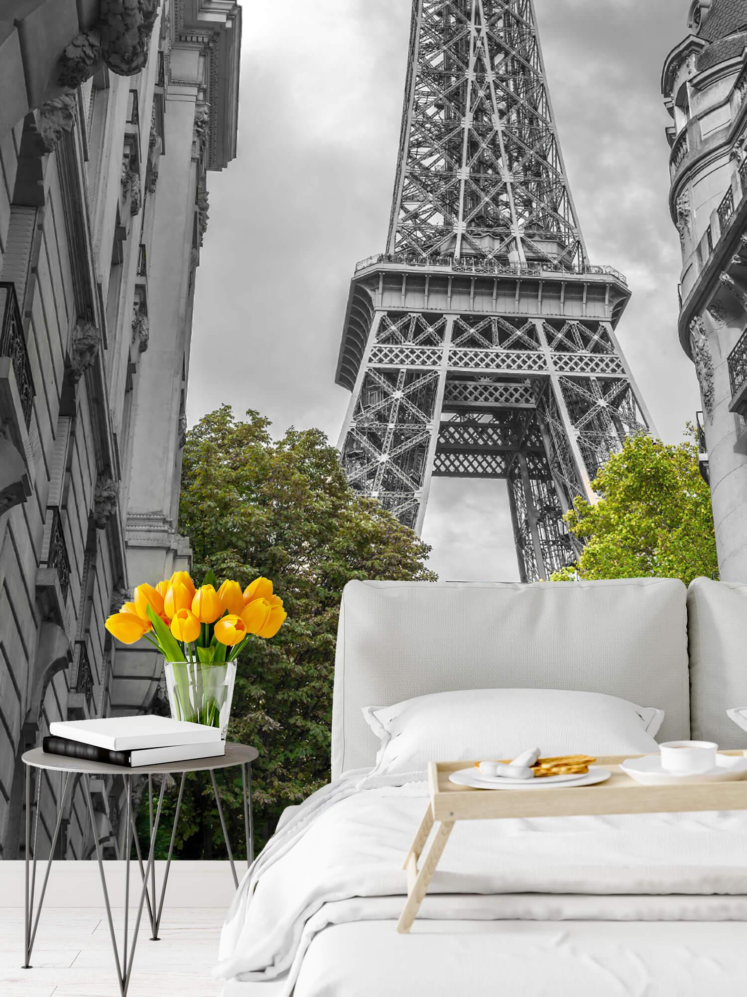 Eiffeltornet svart och vitt 2