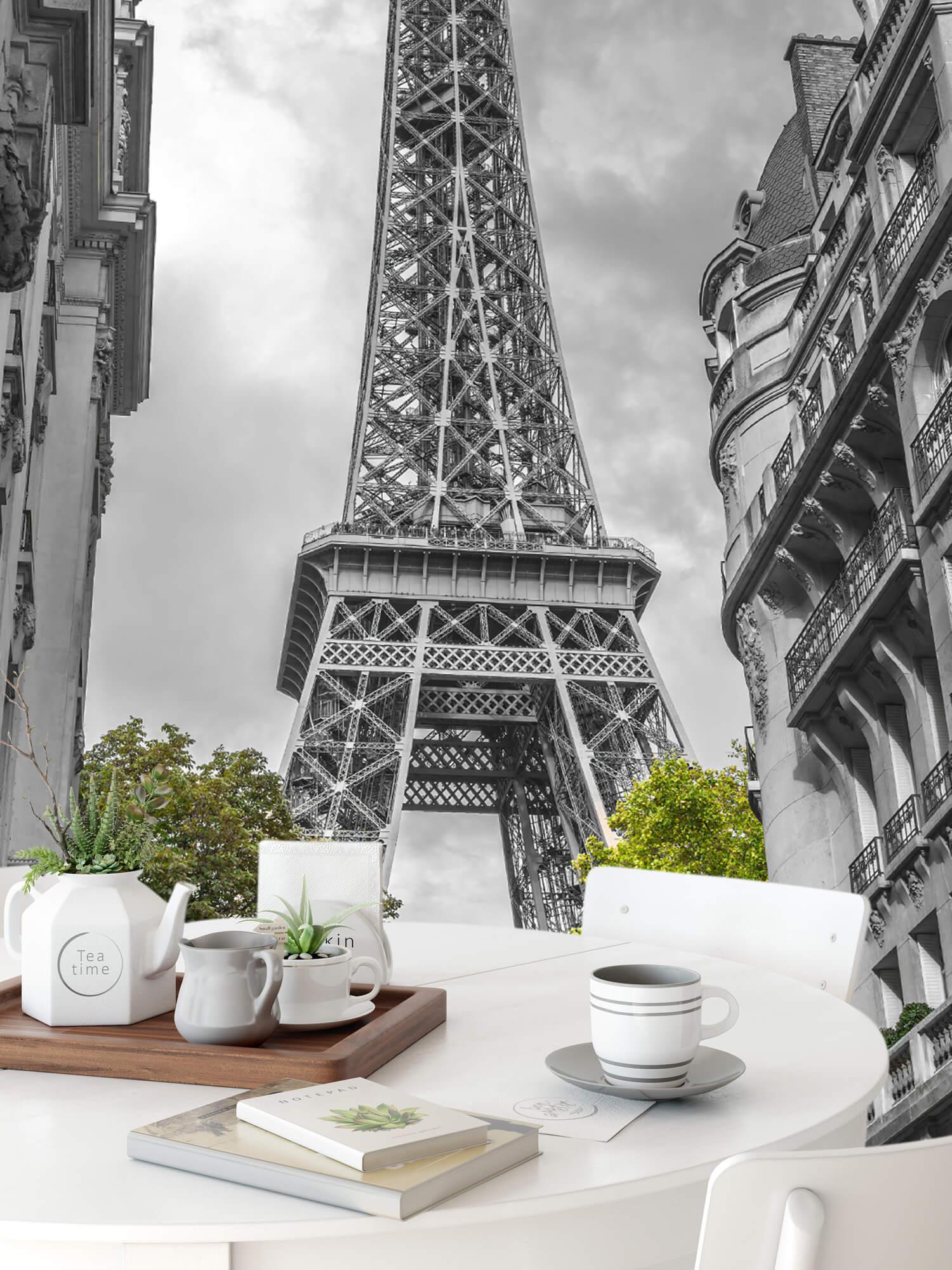 Eiffeltornet svart och vitt 9