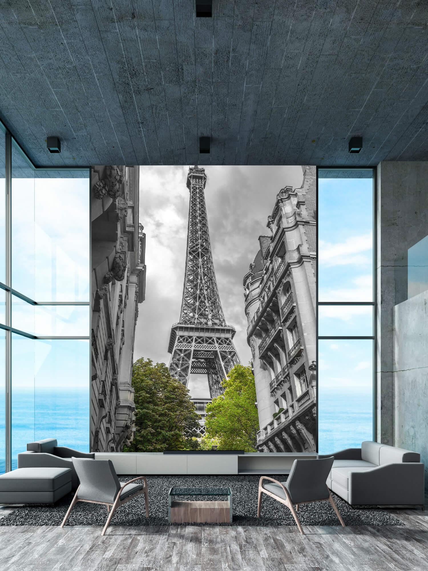 Eiffeltornet svart och vitt 1