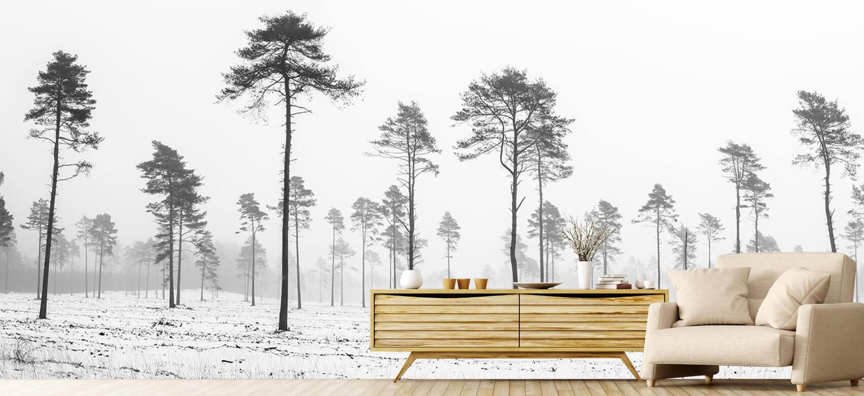 Snöigt område 4