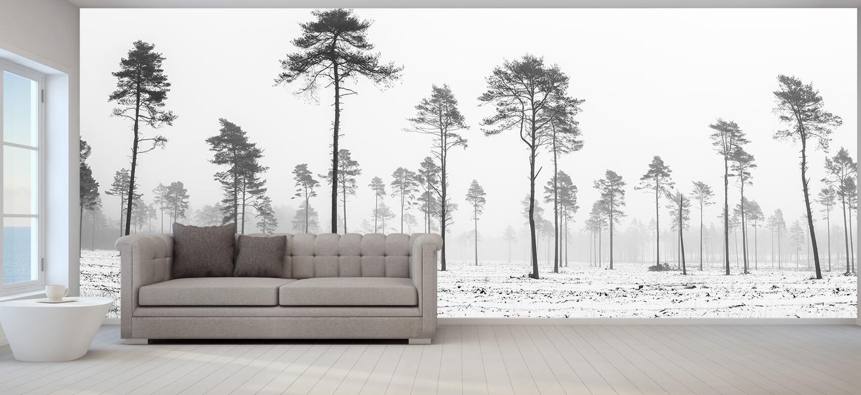 Snöigt område 5