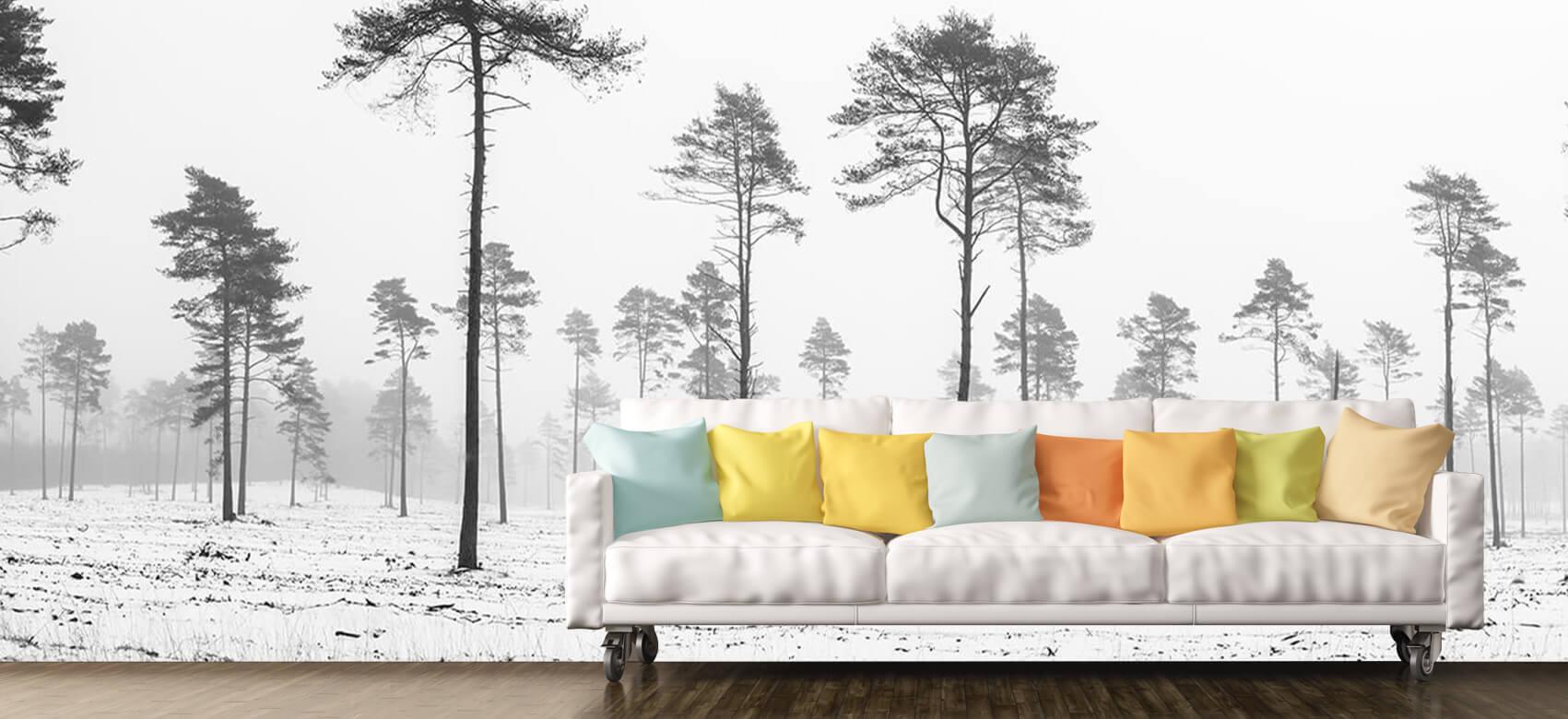 Snöigt område 6